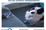 Islay - Yes for Scottish Independence - Mum's flat